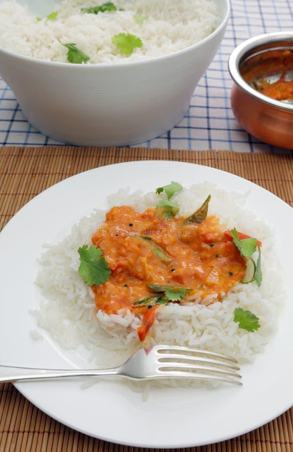 Curry del pomodoro del Kerala fotografia stock libera da diritti