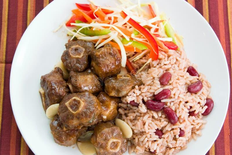 Curry del rabo de buey con arroz foto de archivo libre de regalías