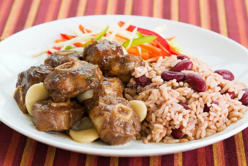 Curry del rabo de buey con arroz imágenes de archivo libres de regalías