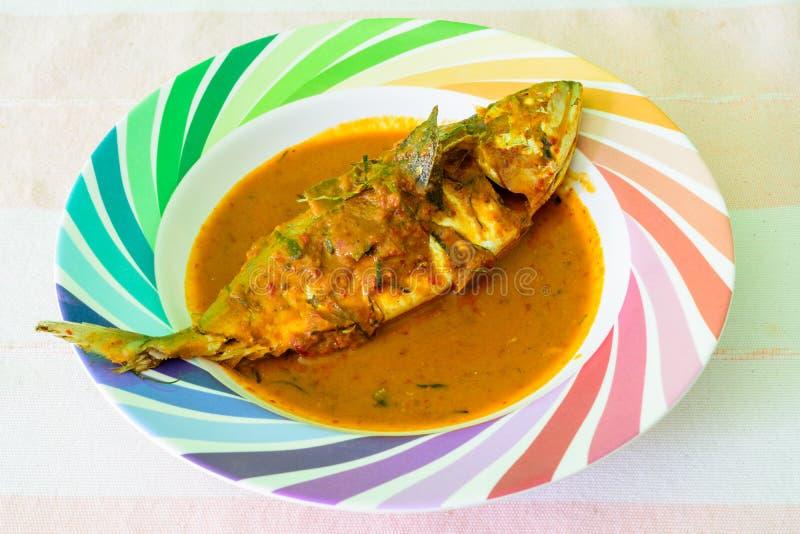 Curry dell'alimento tailandese piccante dello sgombro fotografia stock