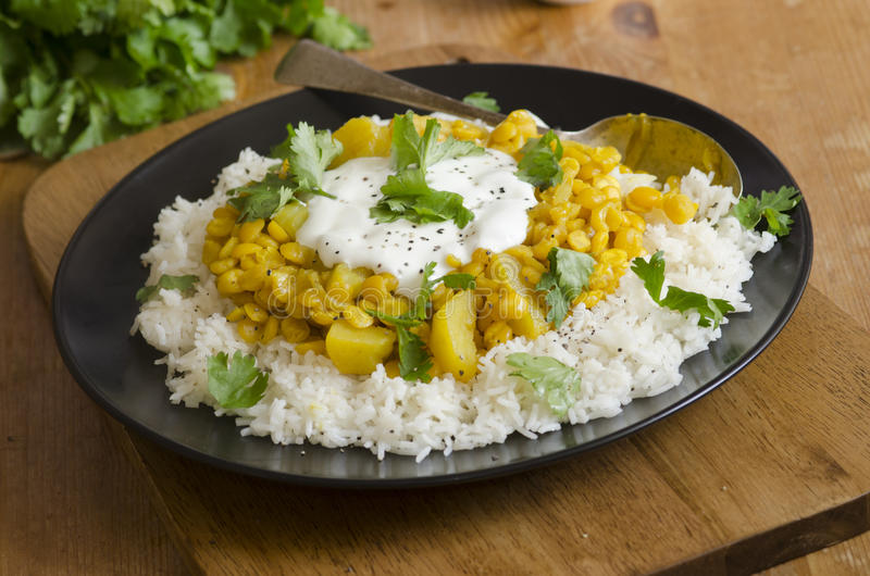 Curry della lenticchia e della patata fotografia stock libera da diritti