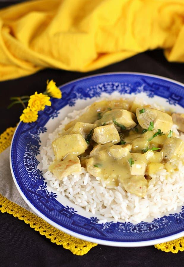 Curry della mela e del pollo con riso fotografia stock libera da diritti