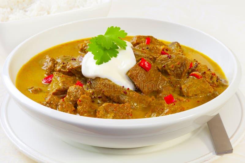 Curry di Madras del manzo fotografie stock libere da diritti