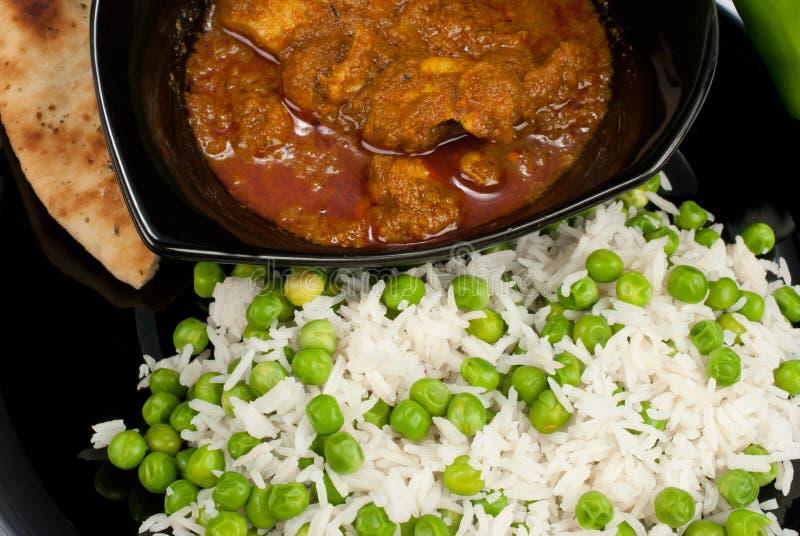 Curry di Madras del pollo fotografia stock libera da diritti