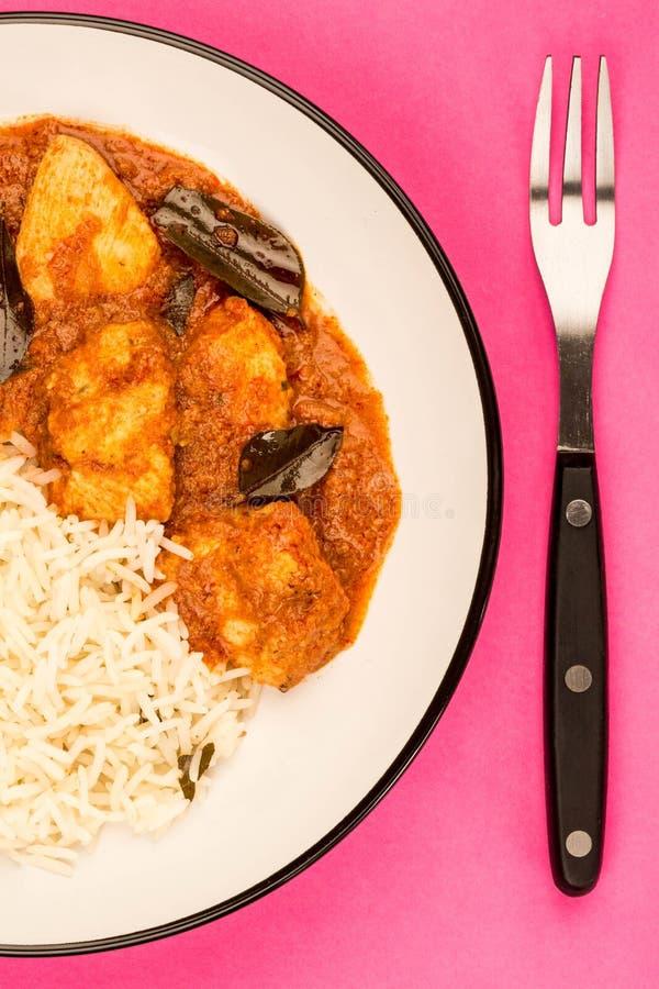 Curry di Madras del pollo e riso basmati immagini stock libere da diritti
