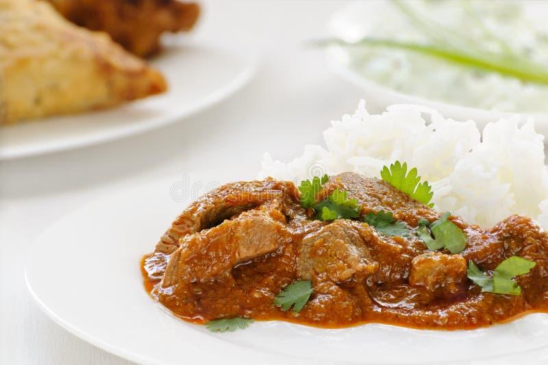 Curry di Madras dell'agnello fotografia stock