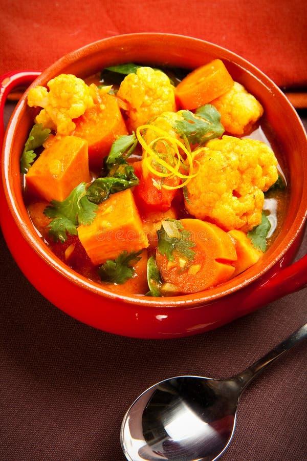 Curry di verdure fotografie stock libere da diritti