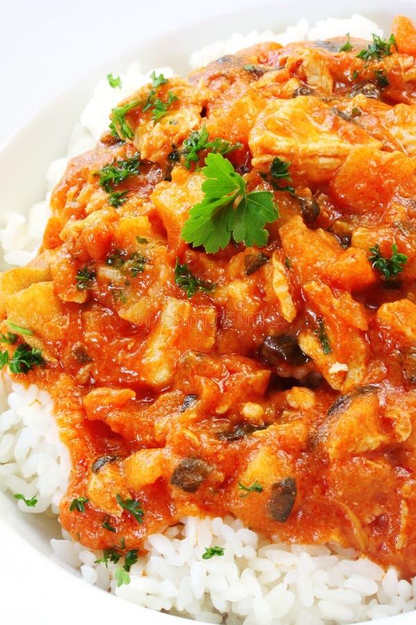 Curry e riso del pollo fotografie stock