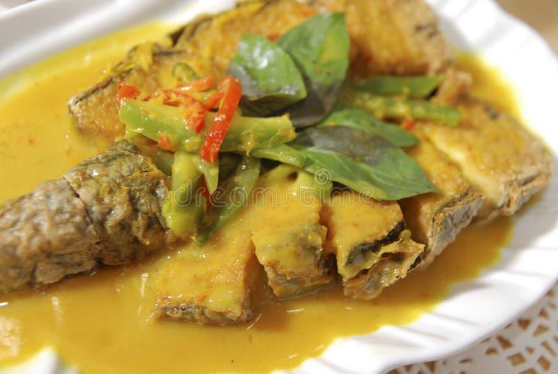 Curry-Fische für Vigeterian stockbild