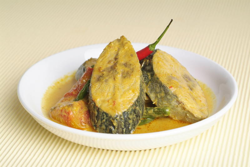 Curry fish royalty free stock image
