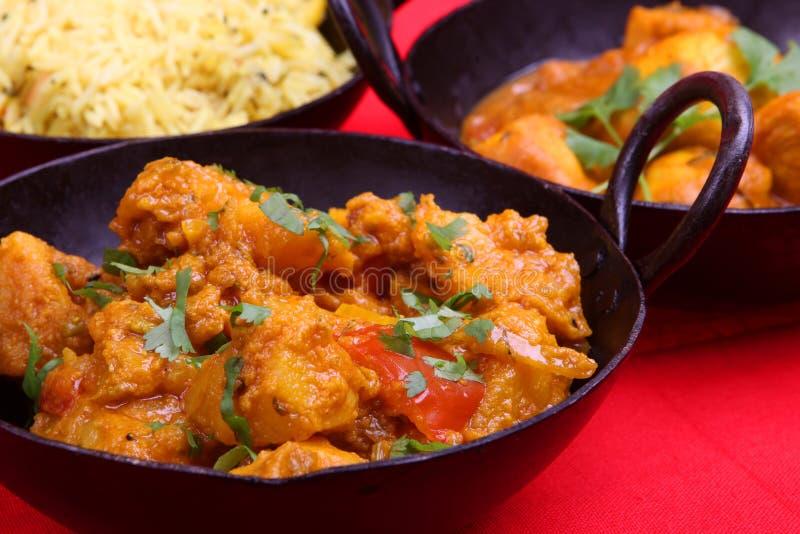 curry hindusa posiłek. fotografia stock