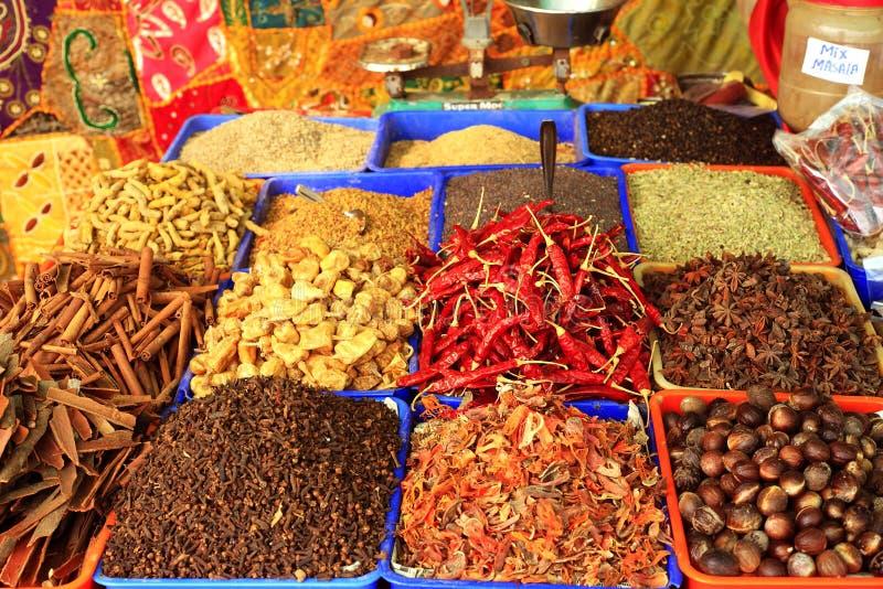 curry kryddar varkala royaltyfri bild