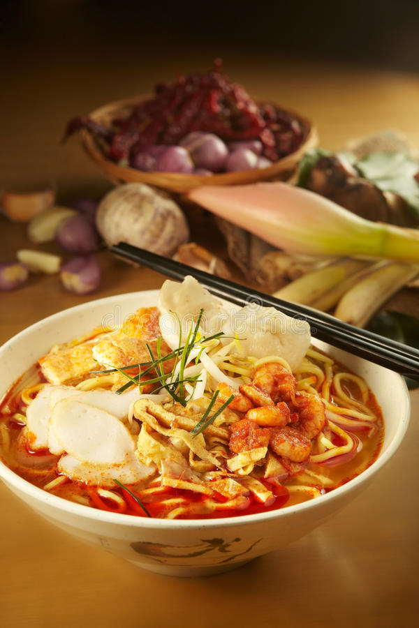 Free Curry Laksa Noddle Royalty Free Stock Photo - 21313495
