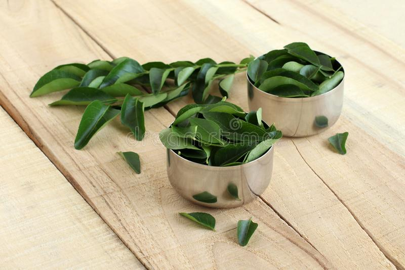 Curry Leaves Healthy Indian Food Ingredient stock photography