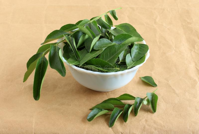 Curry Leaves Healthy Indian Food used in Sambars and Curries. Curry leaves, which are a healthy ingredient used in Indian food like sambar, rasam and curries royalty free stock images