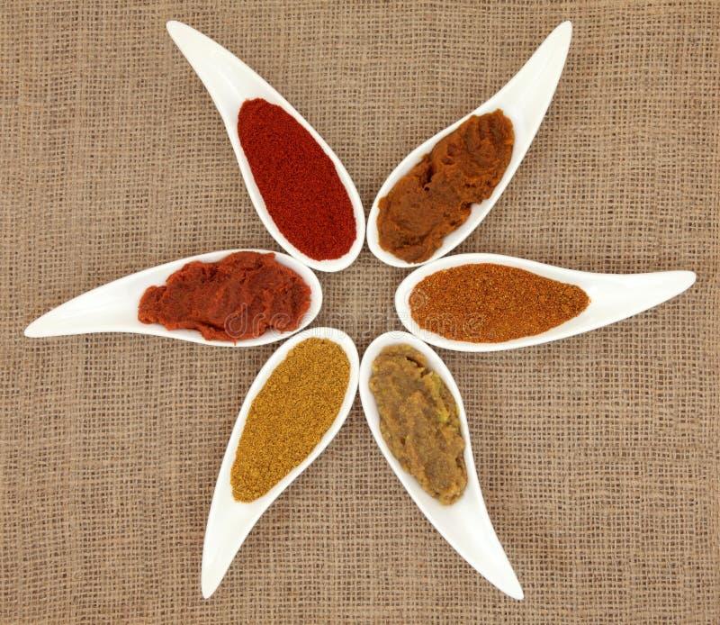 Curry-Paste und Pulver stockbilder