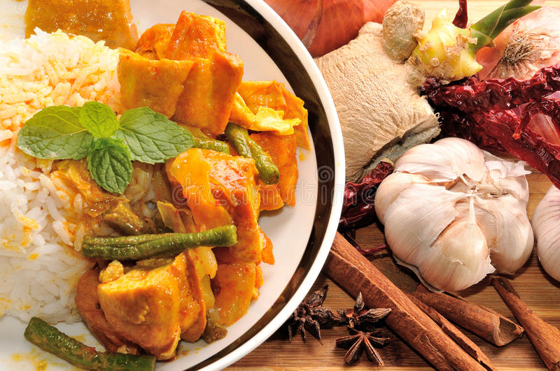 Download Curry rice stock photo. Image of food, lifestyle, asian - 26865702