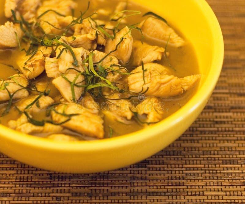 Curry tailandés del pollo imagenes de archivo