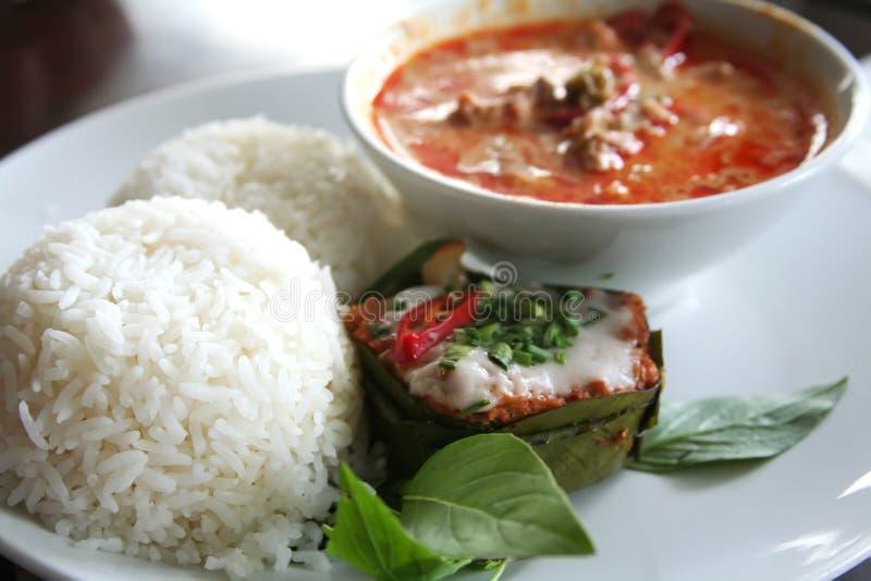 Curry tailandese immagine stock libera da diritti