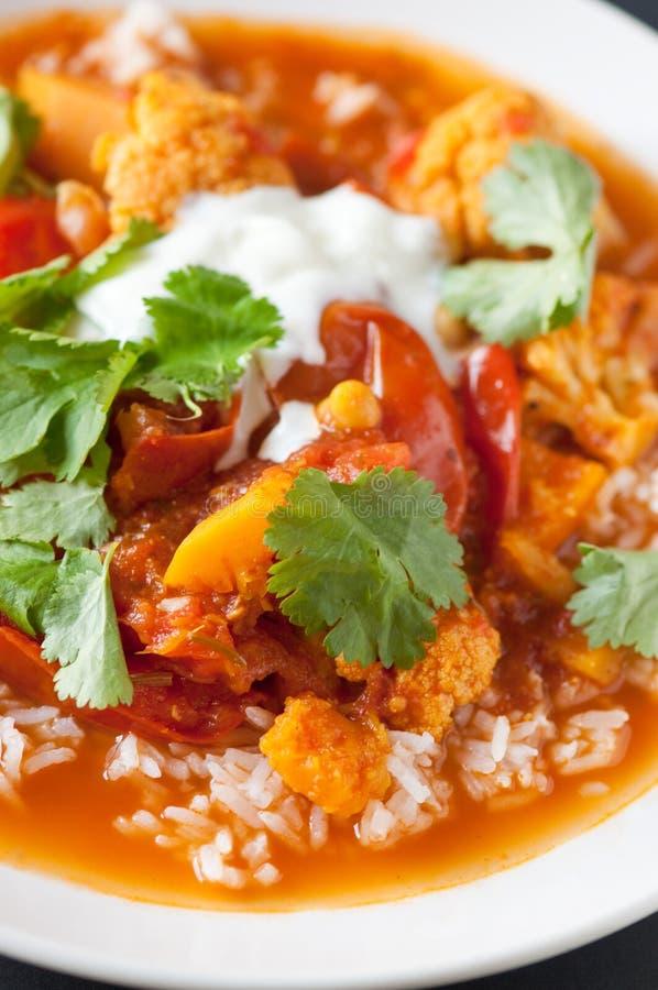 Curry vegetariano fotos de archivo