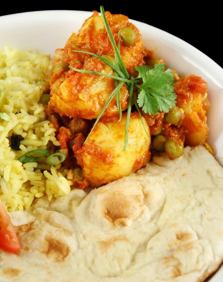 Curry vegetariano indio imagen de archivo