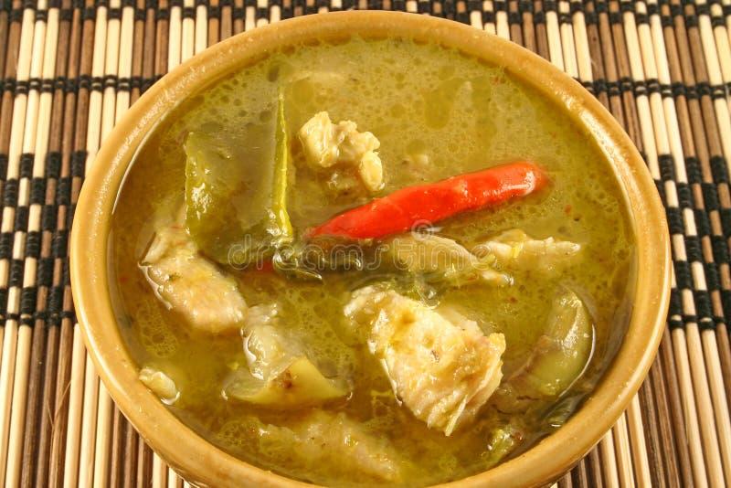 Curry verde tailandese fotografie stock