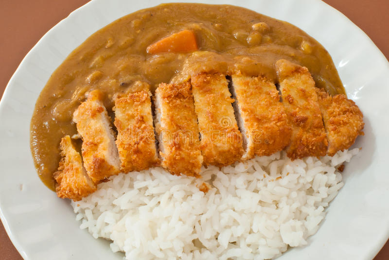Currych ryż z wieprzowiny cutlet fotografia stock