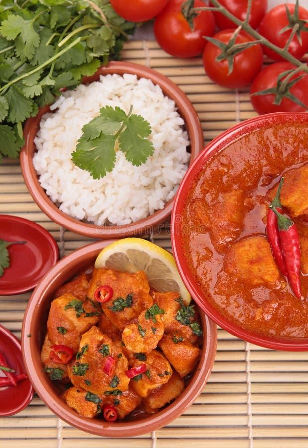Download Currych ryż i kurczak zdjęcie stock. Obraz złożonej z kolendery - 28958624