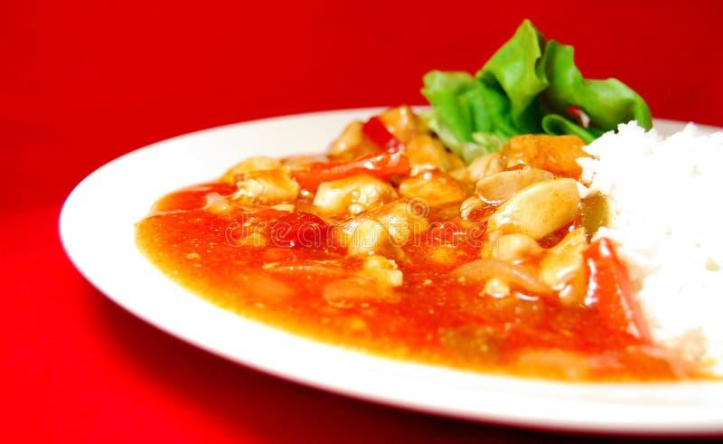 curryindier arkivfoton