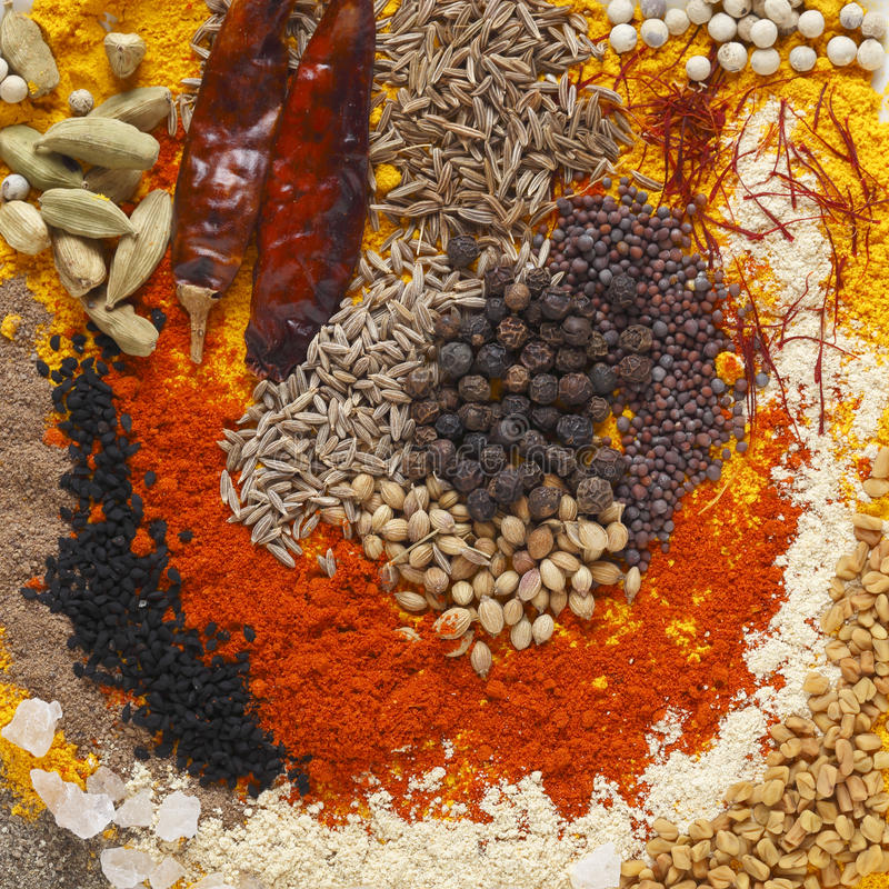 Currykryddor arkivbilder