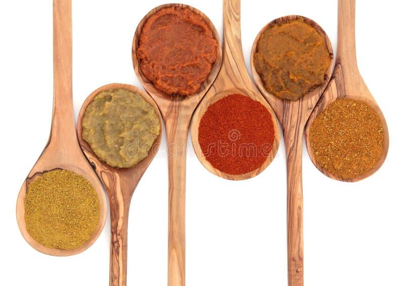 Currypulver und Paste lizenzfreies stockbild