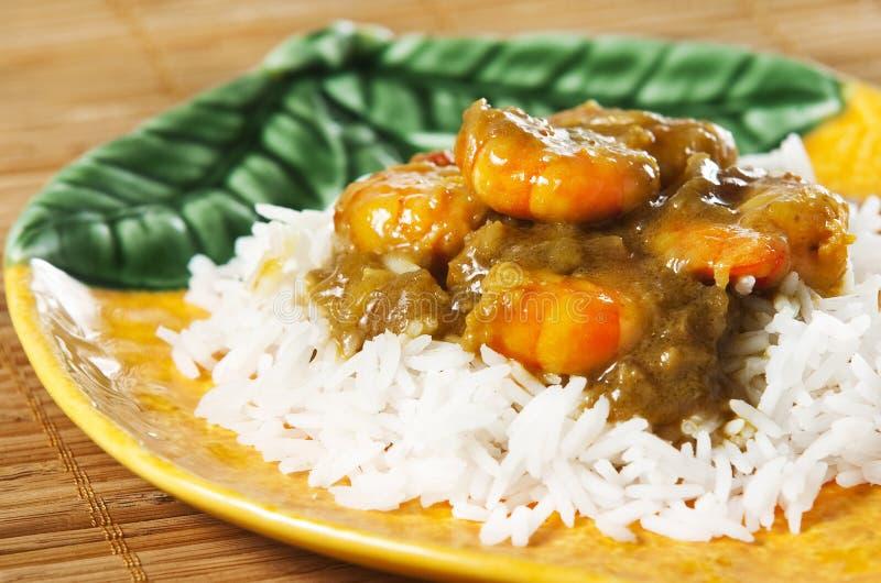 curryräka royaltyfri foto