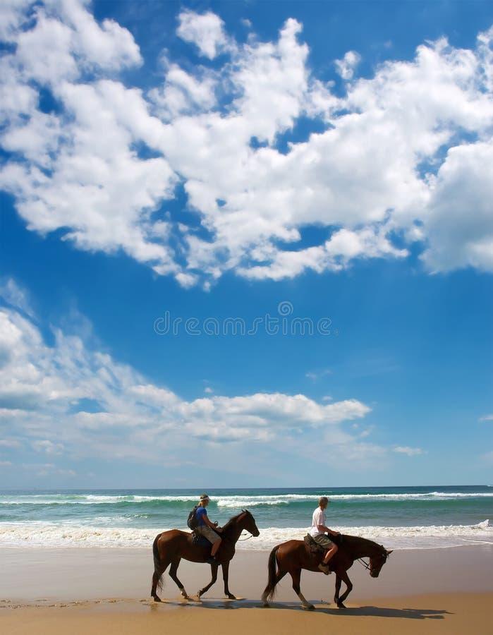 curseurs de cheval de couples de plage images libres de droits