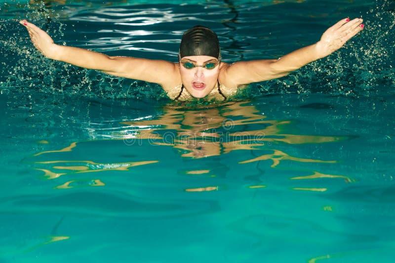 Download Curso De Borboleta Da Natação Do Atleta Da Mulher Na Associação Foto de Stock - Imagem de competição, borboleta: 65577162