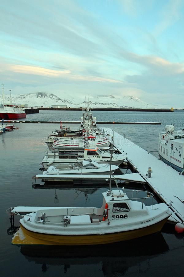 Curso de Islândia fotos de stock royalty free