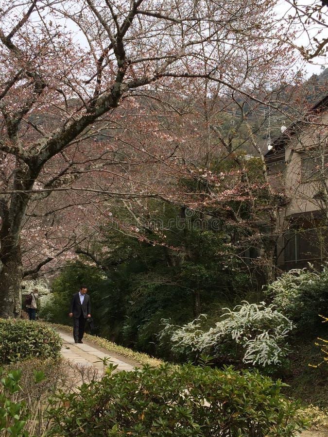 Curso de Kyoto Kansai Japão do trajeto fotos de stock royalty free