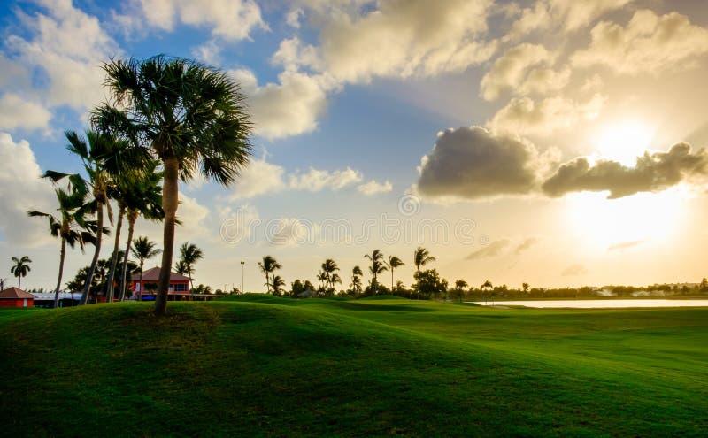 Curso grande 8 do Caimão-golfe fotografia de stock royalty free