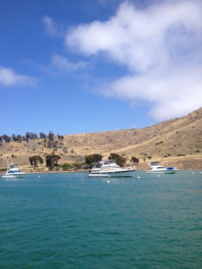 Curso na ilha de Catalina imagem de stock