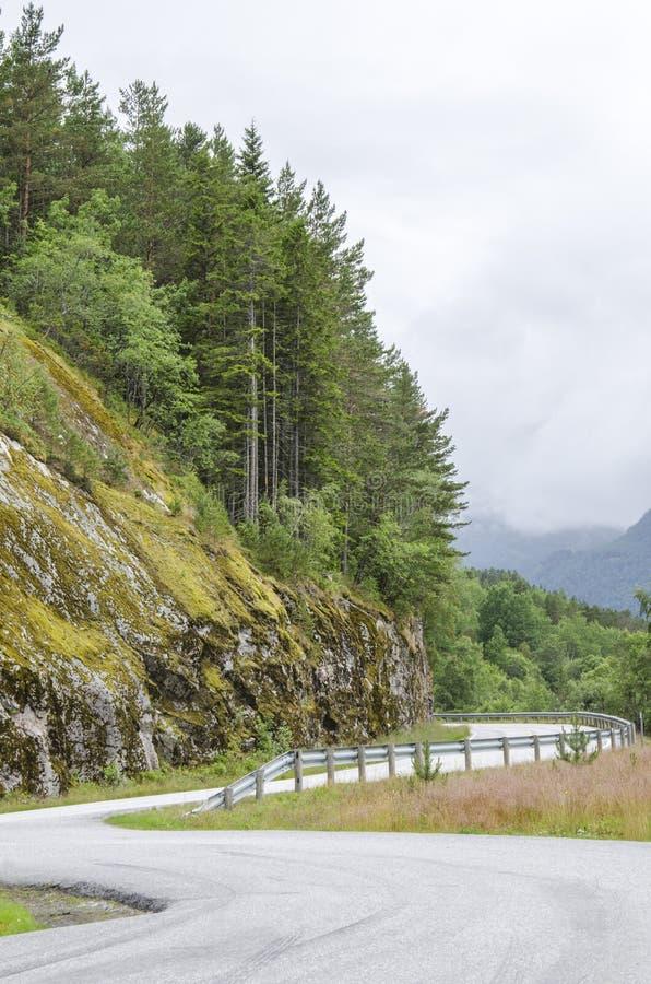 Download Curso em Noruega imagem de stock. Imagem de viagem, feriado - 29844343