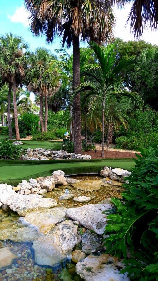 Curso tropical do jardim e do minigolf em Florida fotos de stock royalty free