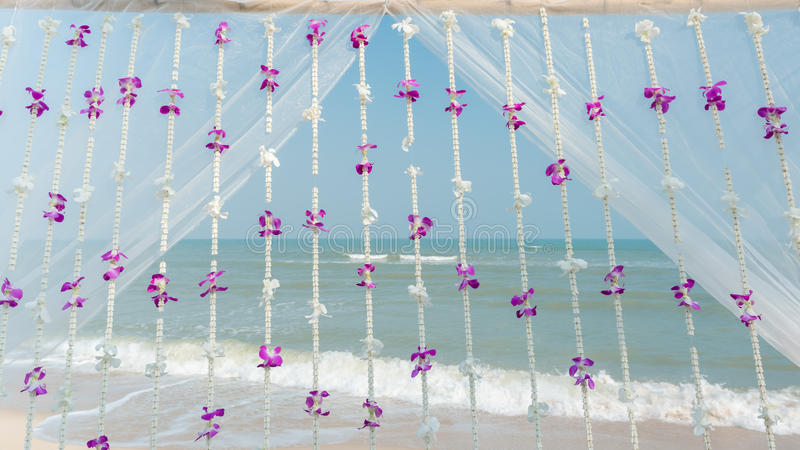 Curtain orchid flowers. Curtain orchid flower for wedding at the beach royalty free stock image