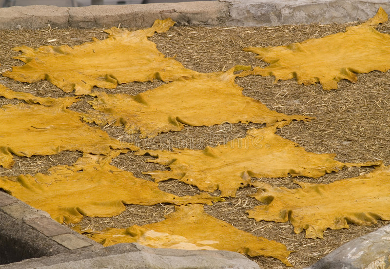 Curtiduría de cuero en Fes, Marruecos imagen de archivo