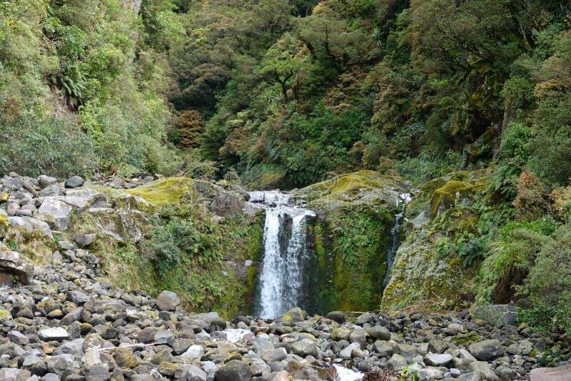 Curtis Falls en el soporte Taranaki en el parque nacional de Egmont, Nueva Zelanda fotografía de archivo