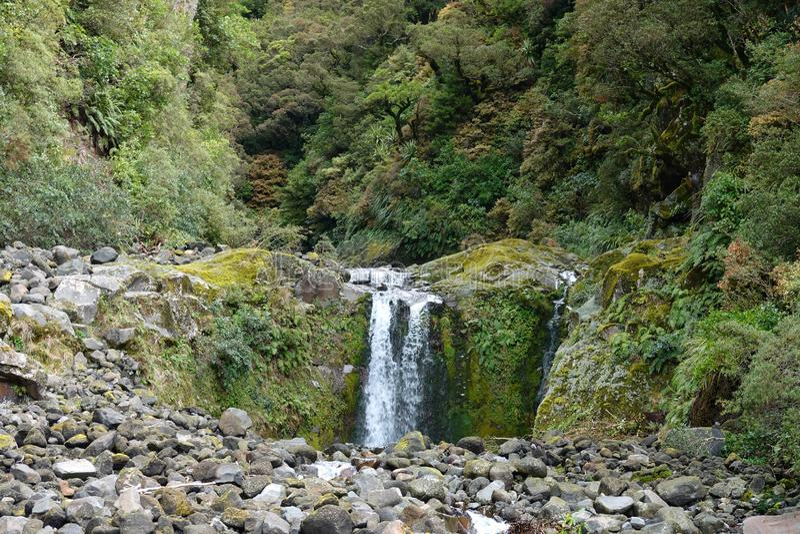 Curtis Falls on Mount Taranaki in Egmont National Park, New Zealand. Curtis waterfall on Mount Taranaki in the Taranaki region on the west coast of New Zealand`s stock photography