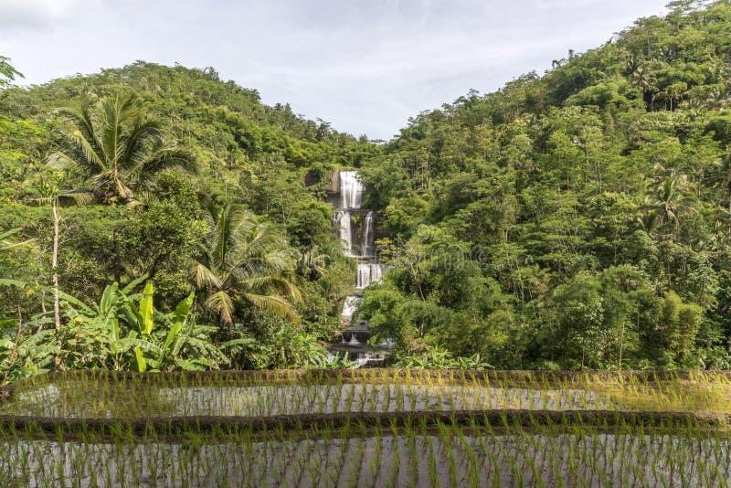 Curug Nangga vattenfall som lokaliseras i den Bogor staden, västra Java, Indonesien royaltyfri fotografi