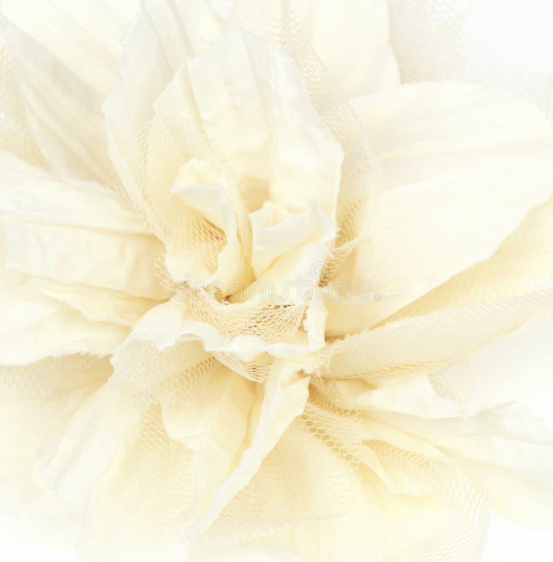 Curva bonita da flor fotos de stock royalty free