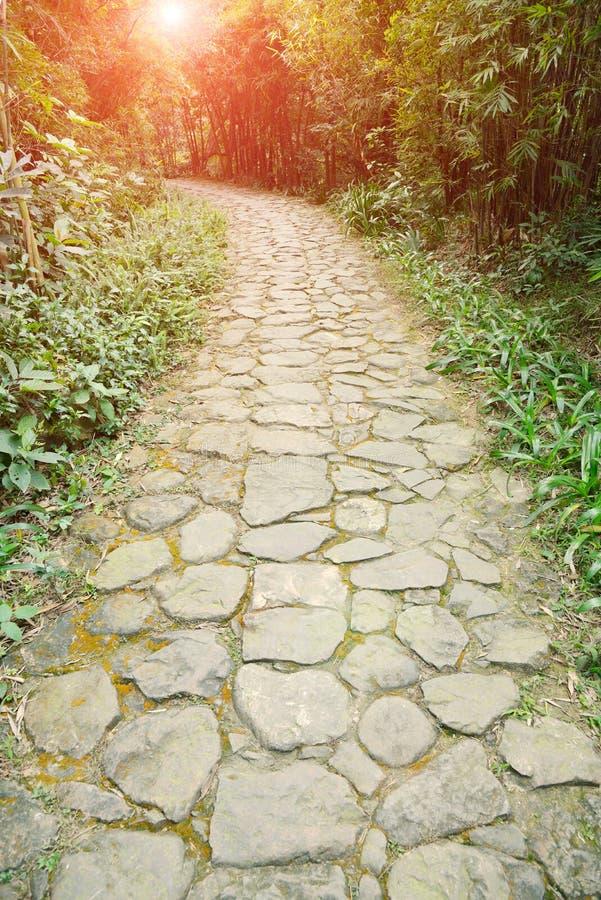 Curva del sentiero per pedoni di pietra della pavimentazione fotografia stock