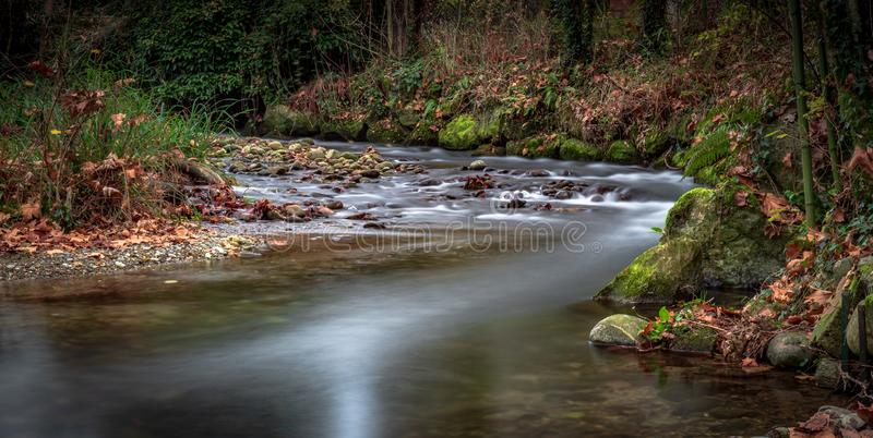 Curva della natura del fiume immagine stock