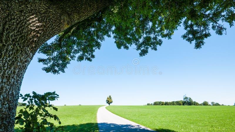 Download Curva foto de stock. Imagem de paisagem, céu, vazio, ninguém - 29842004