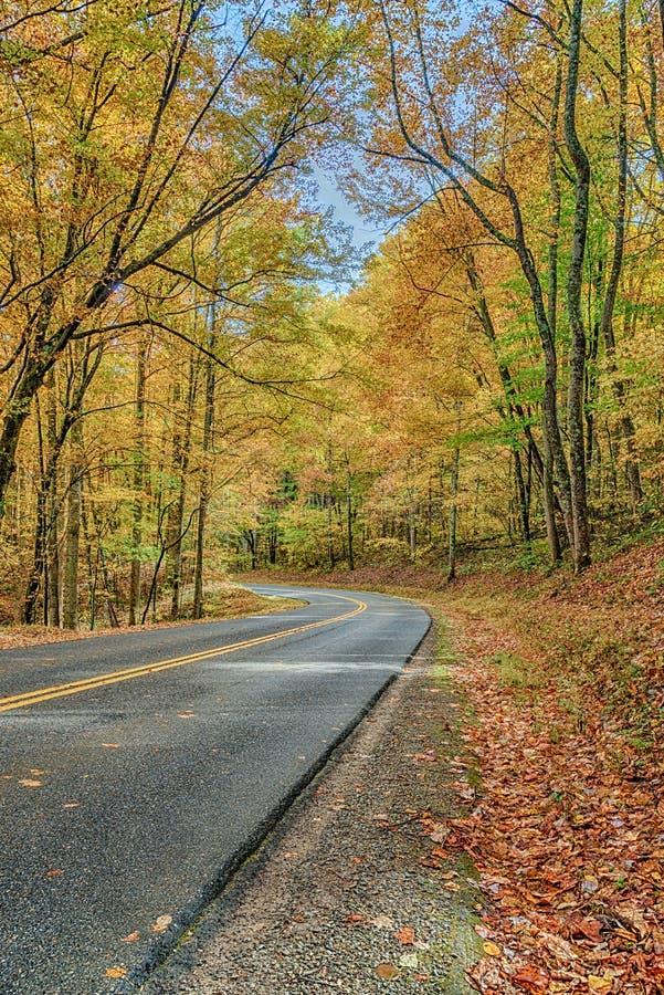 Curvando a estrada através da montanha fumarento Autumn Splendor imagem de stock royalty free